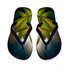 Chakra Lotus - Heart Green - Greeting C Flip Flops