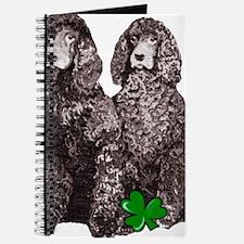 irish water spaniels brown Journal