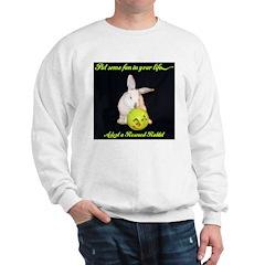Fun Bunny Sweatshirt