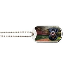 godmadedogs(oval) Dog Tags