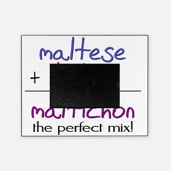 maltichon Picture Frame