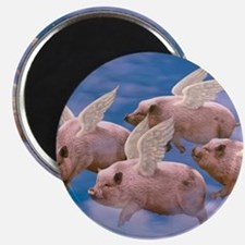 cp-ww-pad-airborne Magnet