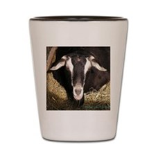 smiling-goat Shot Glass