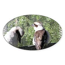 Gorgeous Kookaburras Decal