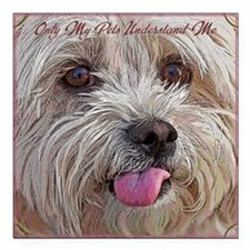 """onlypetsCF Square Car Magnet 3"""" x 3"""""""