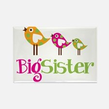 PolkaDotBirds3BigSister Rectangle Magnet