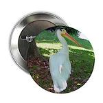 pelican 2.25