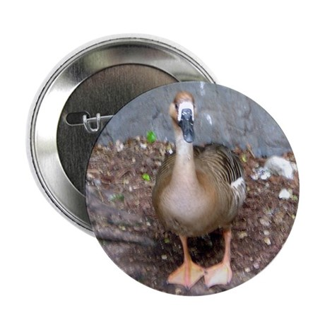 """swan goose 2.25"""" Button (10 pack)"""