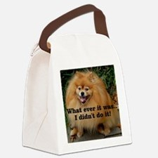 Timmy3 Canvas Lunch Bag