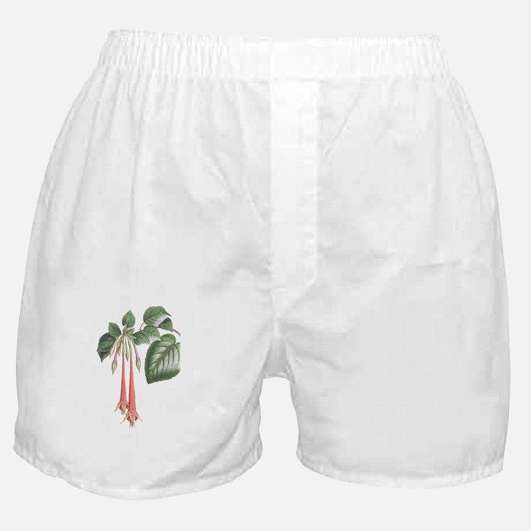 J1 Boxer Shorts