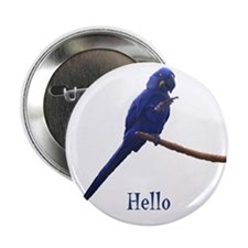 """hello 2.25"""" Button (10 pack)"""