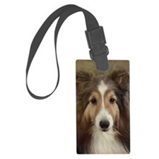 DuncSIGG Luggage Tag