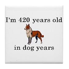 60 birthday dog years collie 2 Tile Coaster