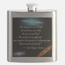 Sagan quote Flask