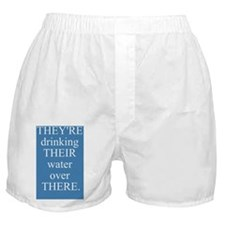 Theyre Their There - waterbottle Boxer Shorts