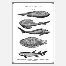 FISH FOSSILS Banner