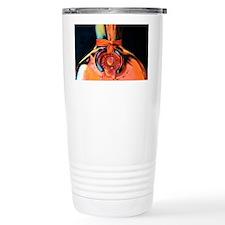 dewars1 Travel Mug