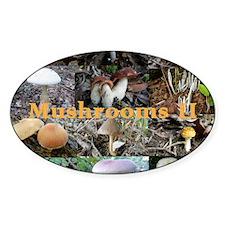 mushroom-calendar2 Decal