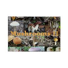 mushroom-calendar2 Rectangle Magnet