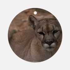 (2) Mountain Lion 1 Round Ornament
