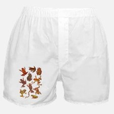 Tree Frogs Boxer Shorts