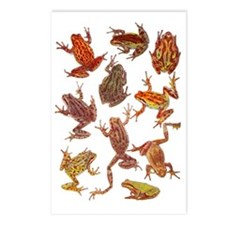 Tree Frogs Postcards (Package of 8)