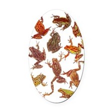 Tree Frogs Oval Car Magnet