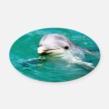 Dolphin in Caribbean Blue Water Oval Car Magnet