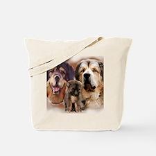 tib mastiff3 Tote Bag