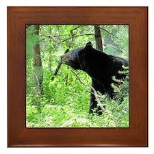 bear Framed Tile