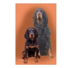 Gordon Setter Two Postcards (Package of 8)