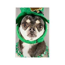 St. Patricks Day Dog Rectangle Magnet