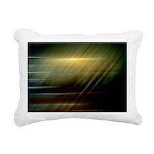 Searcher Rectangular Canvas Pillow