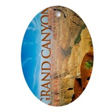 ipad cover_0082_grand canyon1_postca Oval Ornament