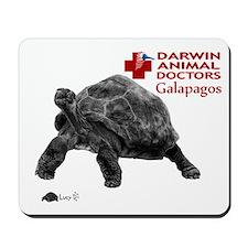tortoise2 Mousepad