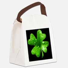 IrishShKeepskBcap Canvas Lunch Bag