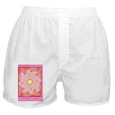 Postcard6x4-Iansa2 Boxer Shorts