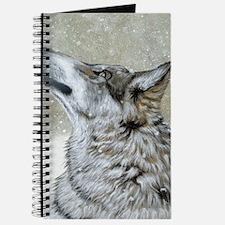 full - snow watcher Journal