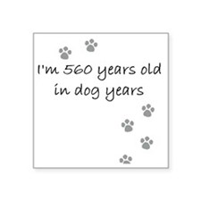 "80 dog years 2-1 Square Sticker 3"" x 3"""