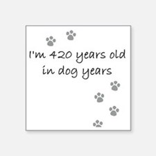 "60 dog years 2-1 Square Sticker 3"" x 3"""