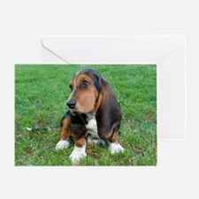 Charlie_puppy Greeting Card