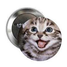 """funny-cats-wallpaper-gallery-12 2.25"""" Button"""