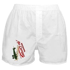 logo aircamper color green cream Boxer Shorts