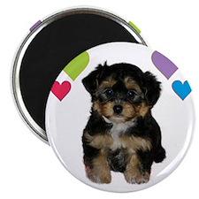 yorkiepoo_colorhearts Magnet