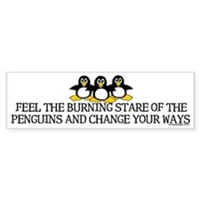Burning Stare Penguins Bumper Bumper Sticker