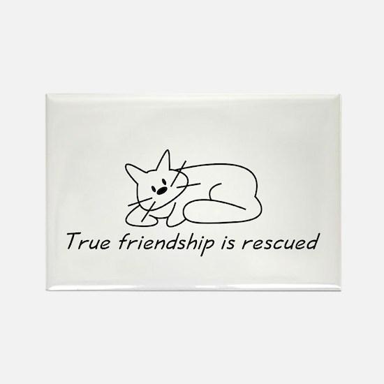 Cat Friendship Rectangle Magnet (10 pack)