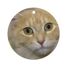 Tortoise shell cat Ornament (Round)