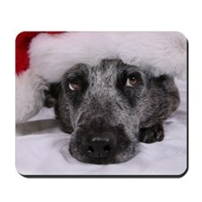 Christmas Blue Heeler Mousepad