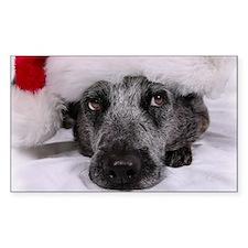 Christmas Blue Heeler Decal