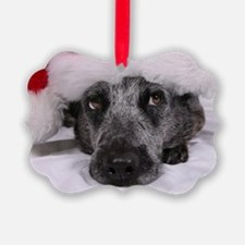 Christmas Blue Heeler Ornament